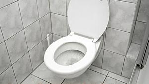 toilet_hint